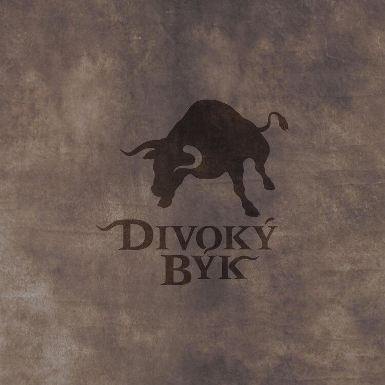 Divoký býk